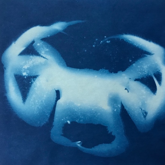 GhostCrab